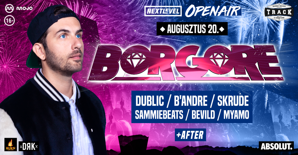 Next Level Openair ■ Borgore  // 08.20.